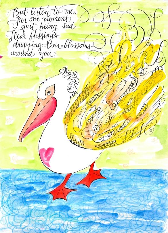 pelican0716