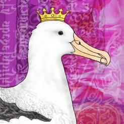 crowned albatross